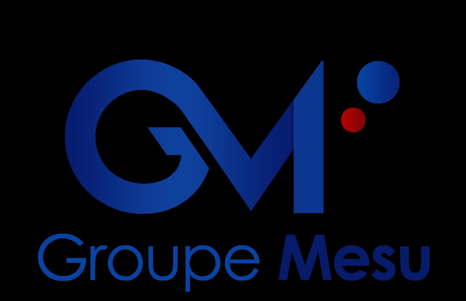 Groupe MESU